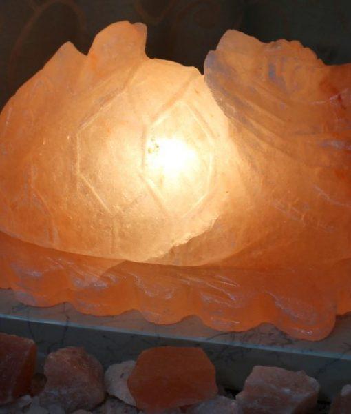 Dragon Turtle Salt Lamp Himalayan Salt Factory