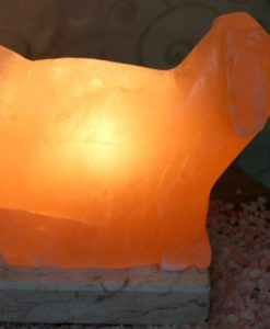 Crafted Himalayan Puppy Salt Lamp | Himalayan Salt Factory
