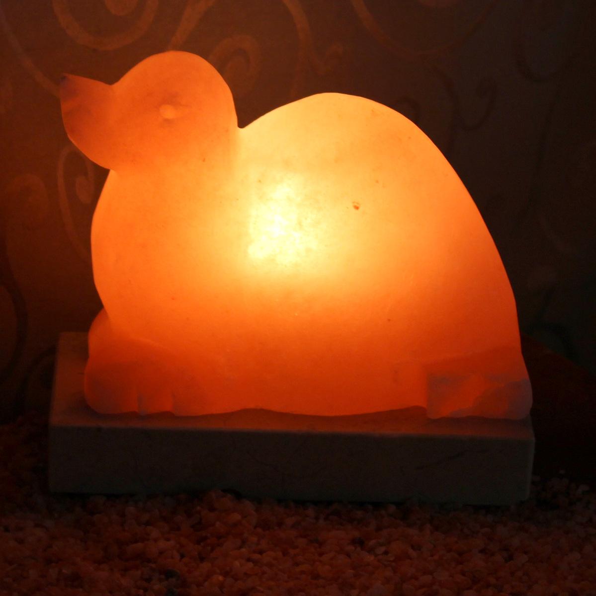 Seal Salt Lamp | Himalayan Salt Factory