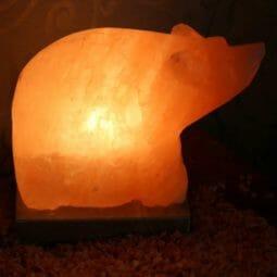 Crafted Bear Salt Lamp | Himalayan Salt Factory