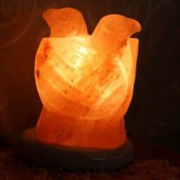 Crafted Himalayan Lovebirds Salt Lamp | Himalayan Salt Factory