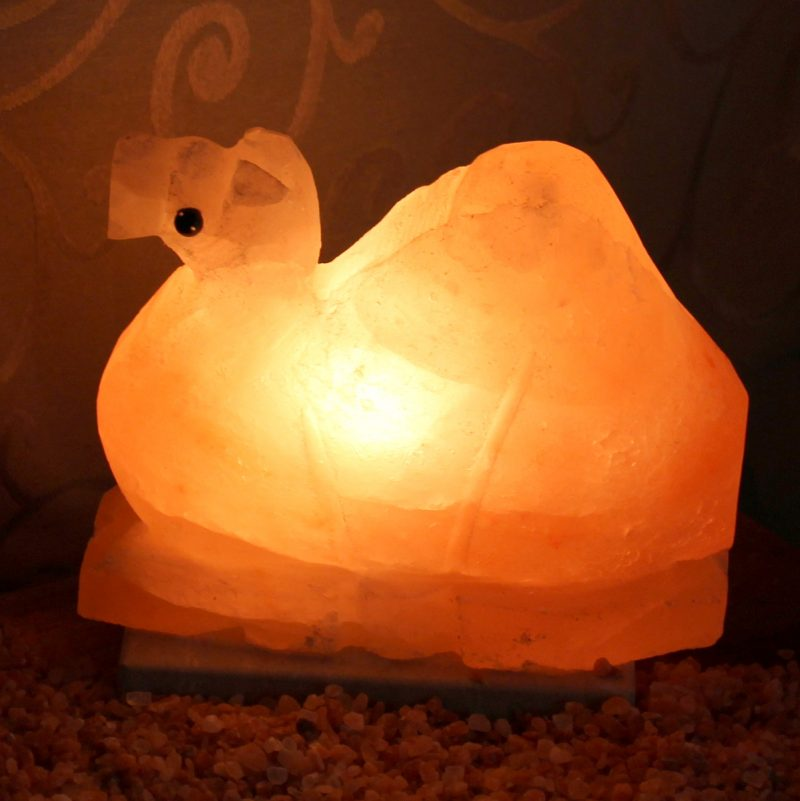 Camel Salt Lamp Himalayan Salt Factory