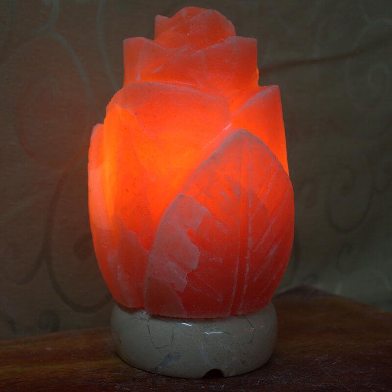 Pink Rose Salt Lamp Himalayan Salt Factory