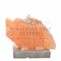 Crafted Himalayan Crocodile Salt Lamp | Himalayan Salt Factory