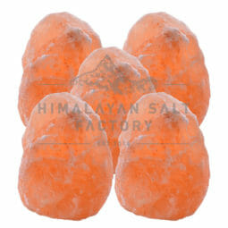 5x 2-3kg Himalayan Salt Lamp Pack (3 legs-No Base) | Himalayan Salt Factory