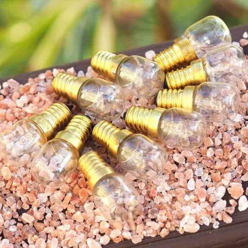 Salt Lamp Light Bulb 15W (10 pack) | Himalayan Salt Factory