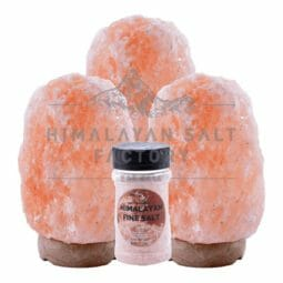 Nov Deal | Himalayan Salt Factory