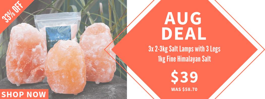 Aug Deal | Himalayan Salt Factory