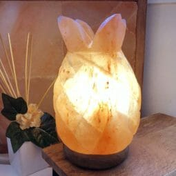Pineapple Salt Lamp | Himalayan Salt Factory