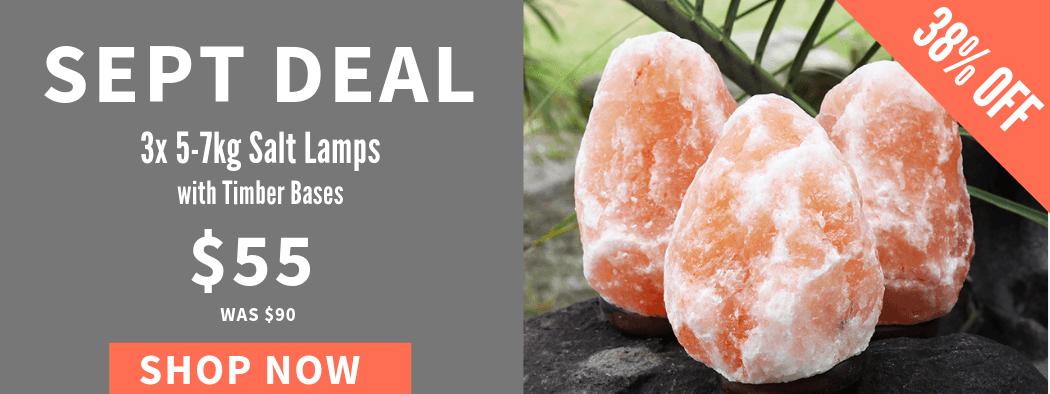 Sept Deal | Himalayan Salt Factory