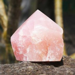 0.3kg Healing Rose Quartz Terminated Point | Himalayan Salt Factory