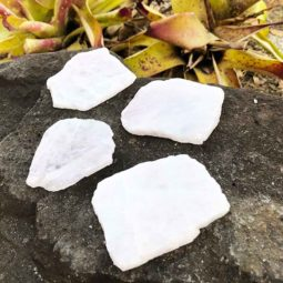 0.60kg Polished Rose Quartz Coaster [4 Pieces] | Himalayan Salt Factory