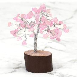 Rose Quartz Mini Gemstone Tree With Timber Base | Himalayan Salt Factory