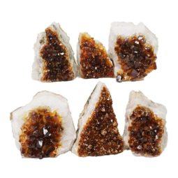 Citrine Mini Cluster Specimen Set N635 | Himalayan Salt Factory