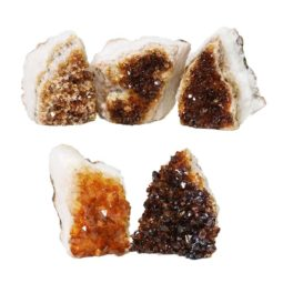 Citrine Mini Cluster Specimen Set N636 | Himalayan Salt Factory