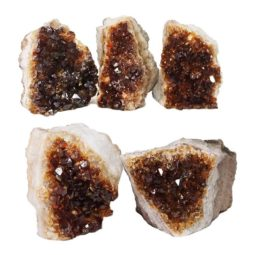 Citrine Mini Cluster Specimen Set N637 | Himalayan Salt Factory