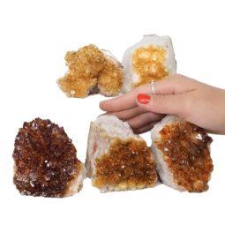 Citrine Mini Cluster Specimen Set N675 | Himalayan Salt Factory
