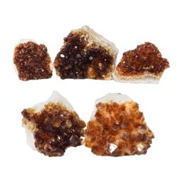 Citrine Mini Cluster Specimen Set N688 | Himalayan Salt Factory